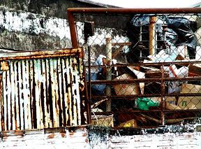 услуги вывоза мусора и снега в Москве и Московской области