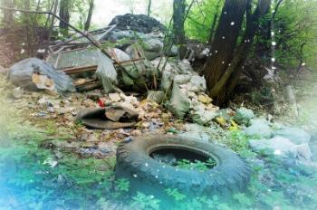 Цены на вывоз мусора в Коломне