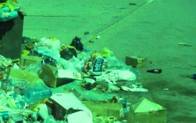 Цена вывоза мусора в Истринском районе