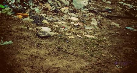 Цены на вывоз мусора в Дедовске
