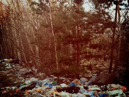 Цена вывоза мусора в Климовске