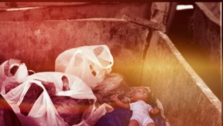 Цены на вывоз мусора в Жуковском