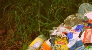 Дешево вывезти мусор в Зеленограде