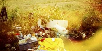 Заказ контейнера для вывоза мусора в Подмосковье